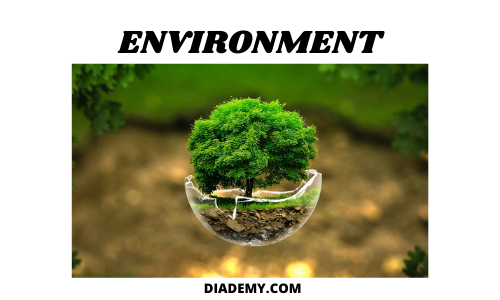 Shankar Ias Environment